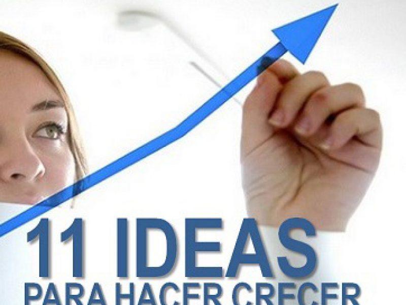 11 ideas para que crezca tu negocio_